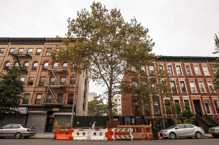 HAP Investments Seeks Community Input on 329 Pleasant Ave Façade